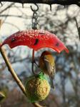 Regenschirm für Meisenknödel Rot